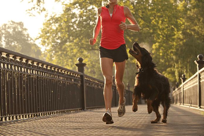 correr con tu mascota